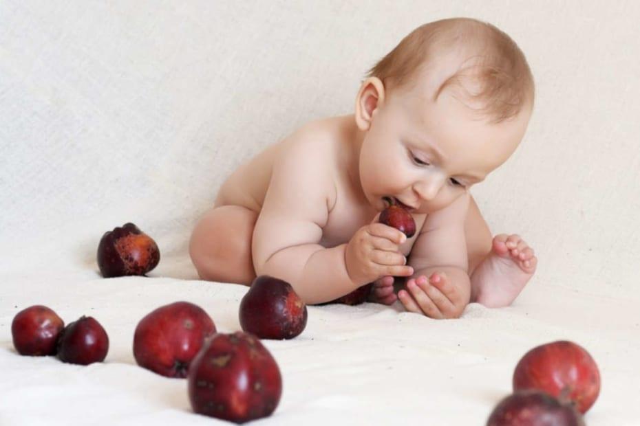 Alimentação infantil - destacada