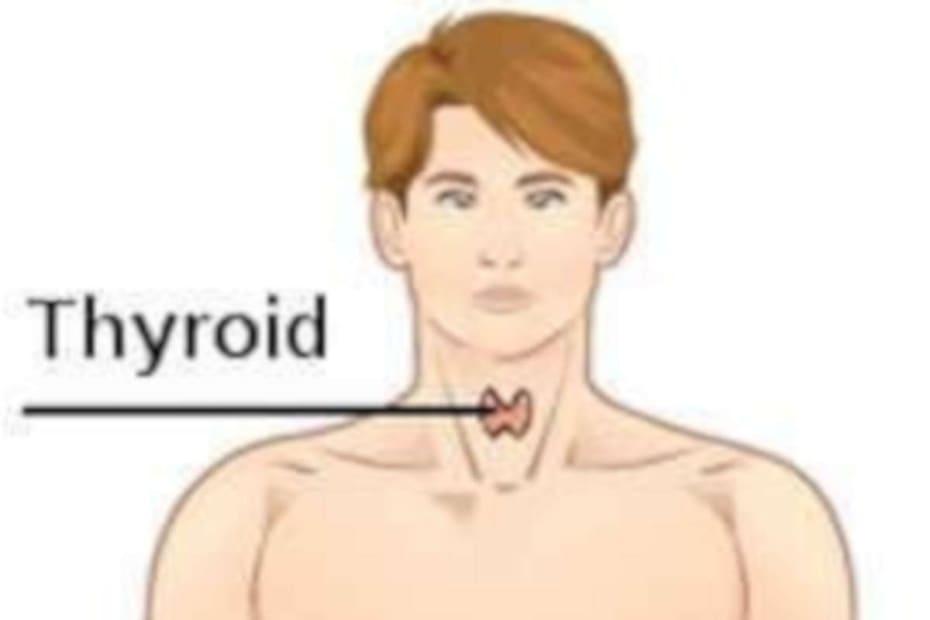 Qual a diferença entre hiper e hipotireoidismo? - destacada