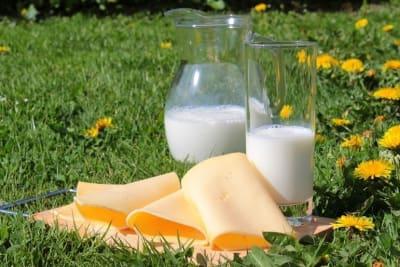 Ist Milch gesund? Calciumreiche Lebensmittel und Milchprodukte