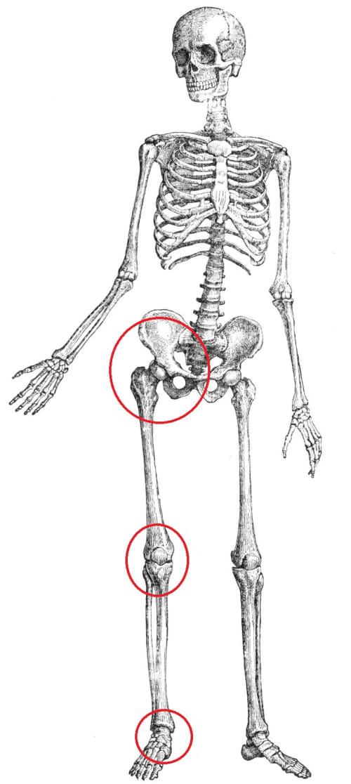 Knieverletzungen Liste