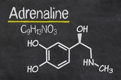 Heilende Kraft der Myokine - Adrenalin