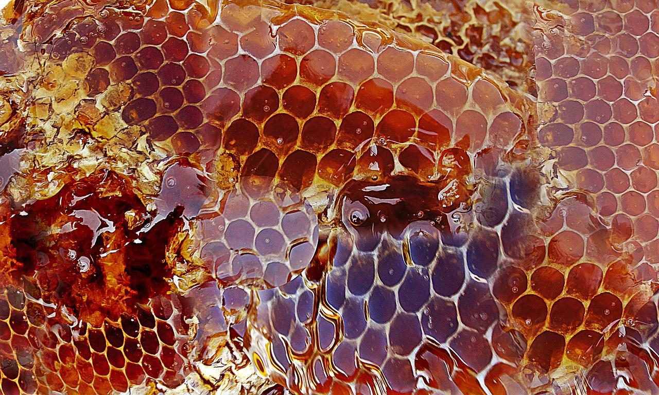 Honig - Zucker - süchtig nach Zucker - Süßstoffe