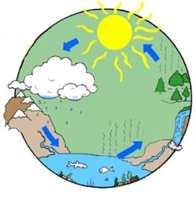 Víz világnapja 2020 | Örömhír Óvoda Veszprém