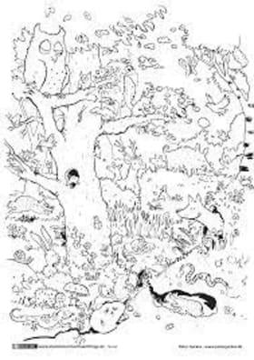 Ősz | Örömhír Óvoda - Veszprém