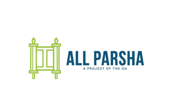 Introducing All Parsha: The Ultimate Parsha Platform