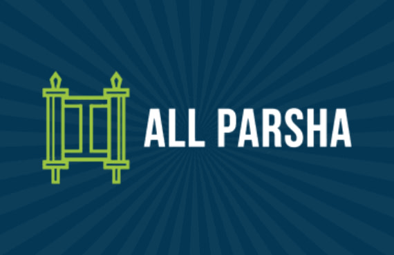 Join My Parsha Plan by All Parsha!