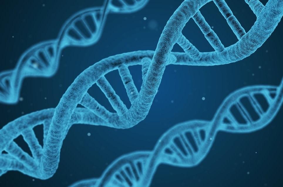 Free Genetic Testing for the BRCA Gene Mutation