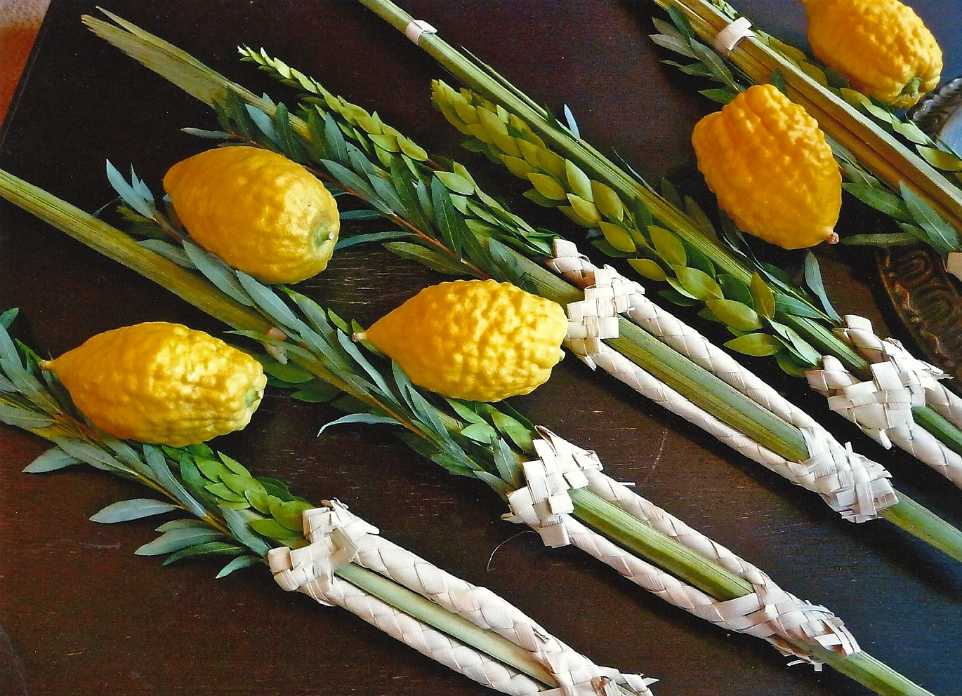 If Your Sukkah and Your Lulav Could Talk…
