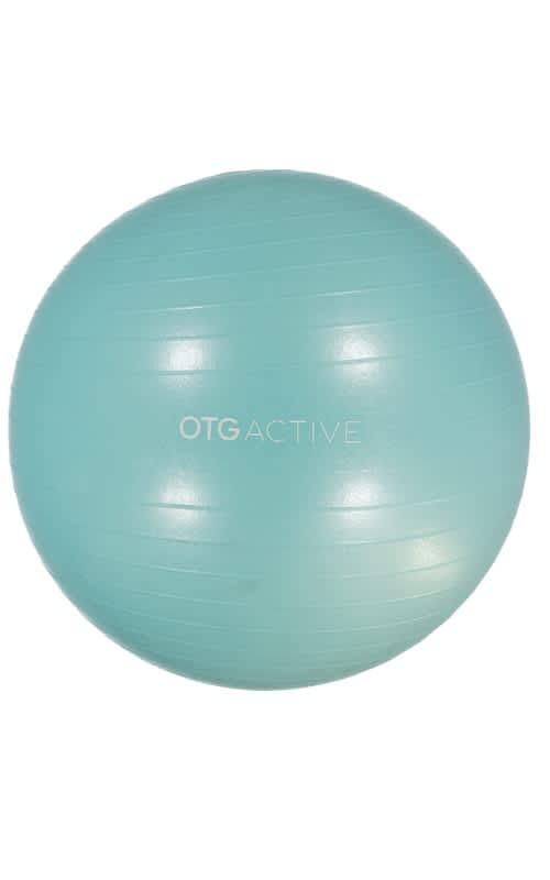 Anti-Burst Gym Ball (65cm)