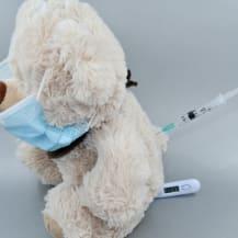 Maladies héréditaires et congénitales du chien