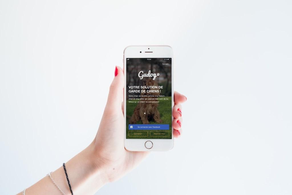 App Gudog - Test Gudog - Animaux - 600x400 - JPG