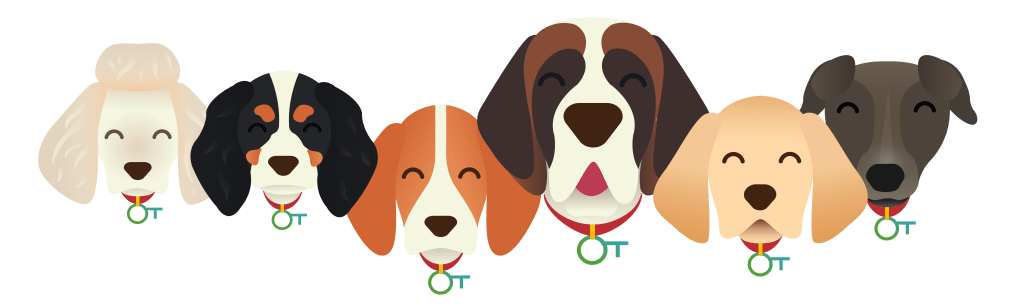 Race de chien - Chien otherwise - Animaux - 5351x1588 - PNG