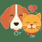 animaux assurance animaux