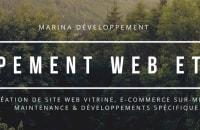 Création site vitrine standard, E-commerce sur-mesure