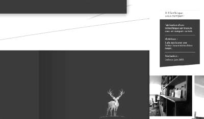 Logo, identité visuelle print et site internet