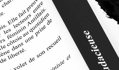 Installée en Normandie, je suis graphiste & spécialisée dans l'accompagnement des auteurs ! 14640