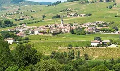 Article Ouest France - Magazine Vins & Champagne