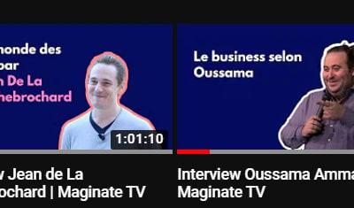 Interviews de plusieurs grands noms du marketing digital en France