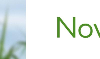 Logo, charte et communication pour Novabiom