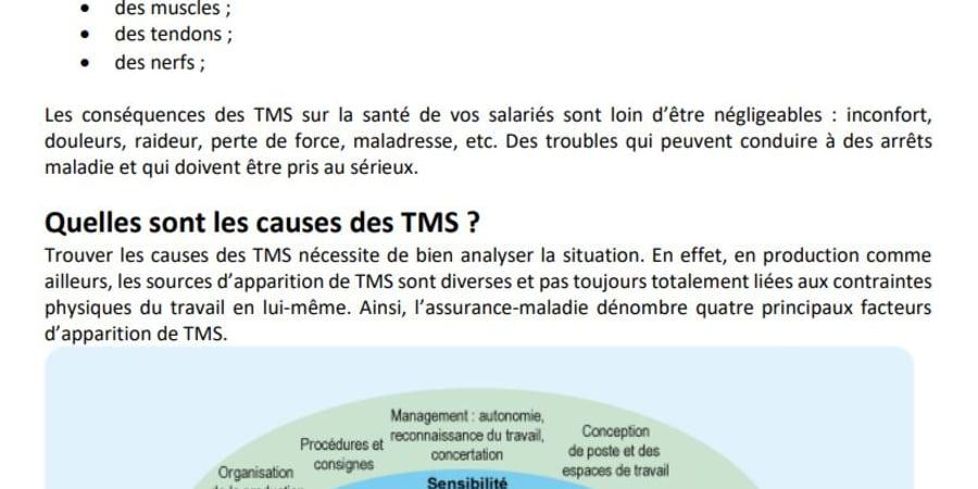 Article de blog au sujet des TMS dans l'industrie (extrait)