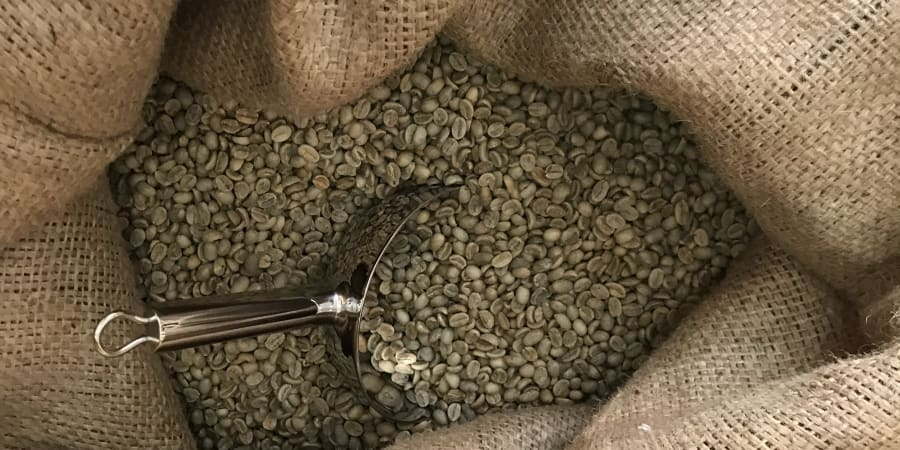 Eh oui du café vert