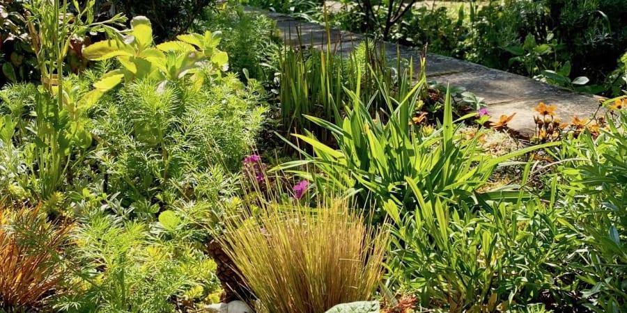 Un jardin toute l'année