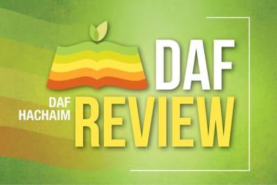 Daf Hachaim Review
