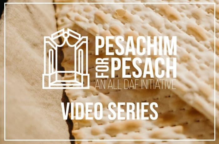 Pesachim For Pesach