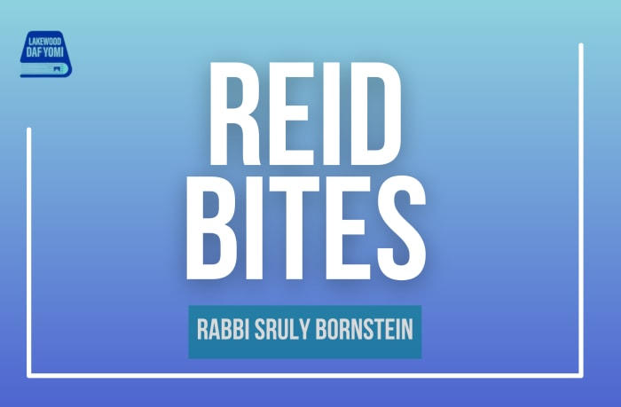 Reid Bites