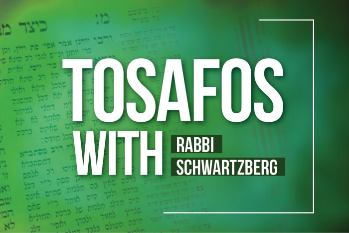 Tosafos with Rabbi Schwartzberg