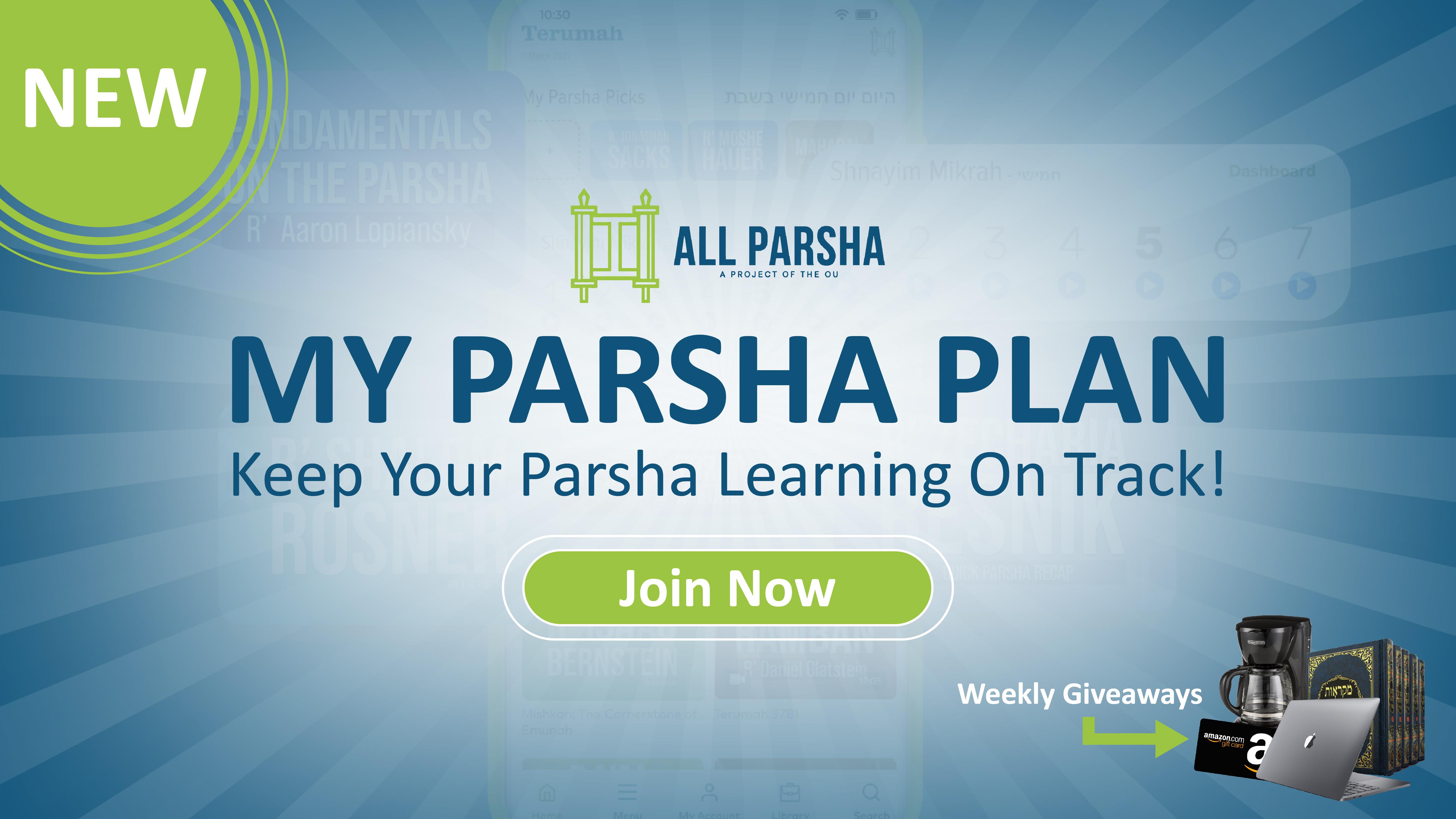 All Parsha Hero image