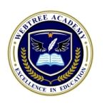 Webtree International School of Excellence (W.I.S.E.)