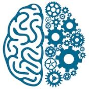 Brain Power Enrichment Programs