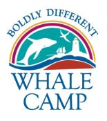 The Whale Camp