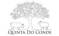 Organic Farm Camp at Quinta do Conde