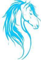 SE Equestrian