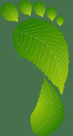 Karbonlábnyom - OurOffset - Go Green Live Green Work Green