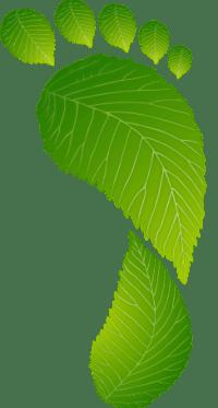 Carbon Footprint   OurOffset Nonprofit LLC.