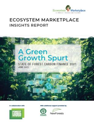 Zöld növekedési lendület, Az erdészeti szén-dioxid-finanszírozás helyzete 2021
