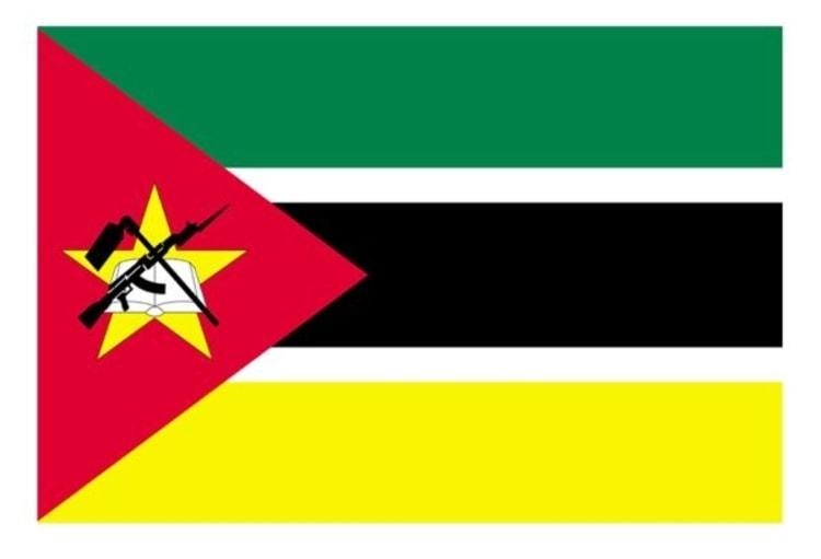 Mozambique Flag Sticker - default