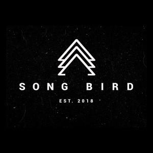 Airstream (SONG BIRD)