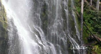 2008 Forest River Sierra