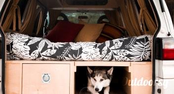 Janis the Mitsubishi Delica 4x4 Campervan