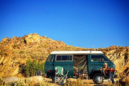 "0""The Green Vanalishi"" - 1984 Volkswagen Westfalia  Denver, CO"