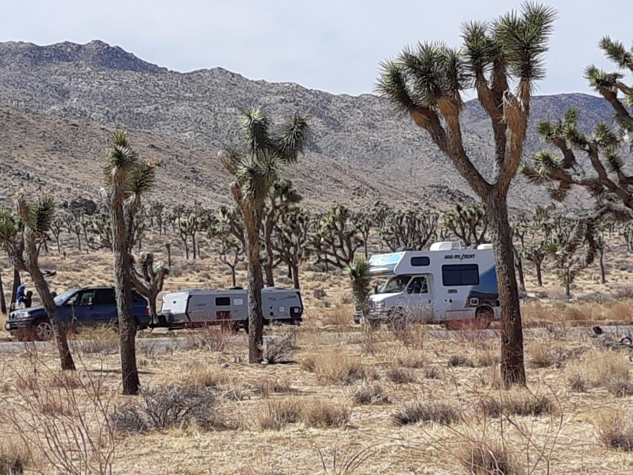 Light and Easy to travel. A-Liner Expedition 2013