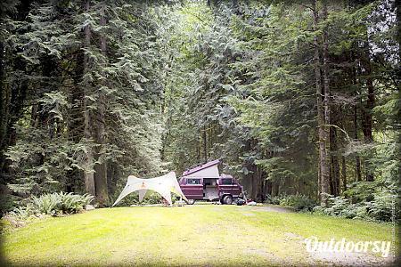 0Peace Van #14:  The Columbia - 1991 Volkswagen Vanagon Full Camper  Seattle, WA