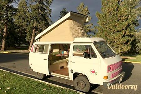 Pinky - Volkswagen Vanagon Camper  Lakewood, CO