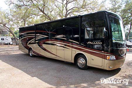 Plazzo - Diesel  Clearwater, FL
