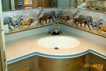 2004 Safari Cheetah  Kansas City, MO