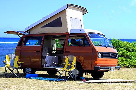 Tango - 1982 Volkswagen Westfalia  Waialua, HI